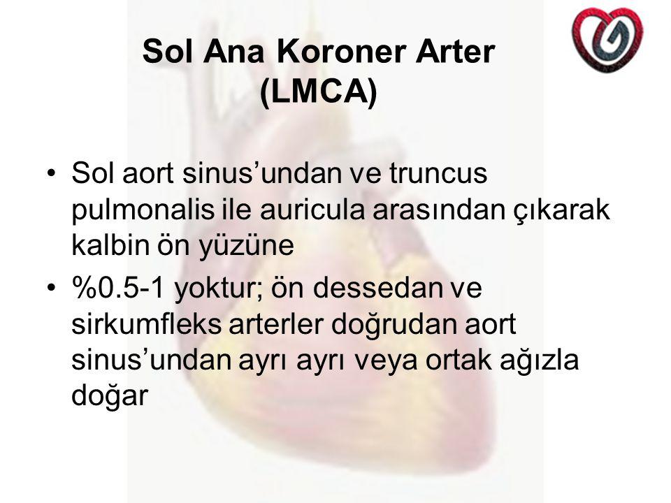 Sol Ana Koroner Arter (LMCA) Sol aort sinus'undan ve truncus pulmonalis ile auricula arasından çıkarak kalbin ön yüzüne %0.5-1 yoktur; ön dessedan ve