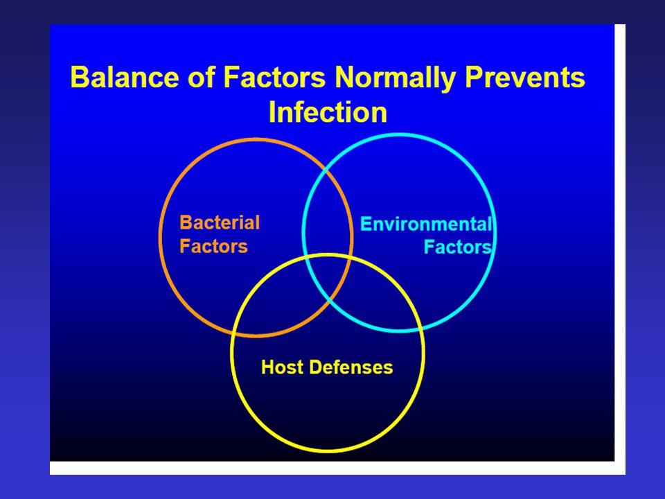 Fizyoloji C.Peritoneal defense mekanizması: 3.Peritoneal defans vs. intra-abdominal infection: a.Lenfatikler aracılığıyla bakterilerin mekanik temizli