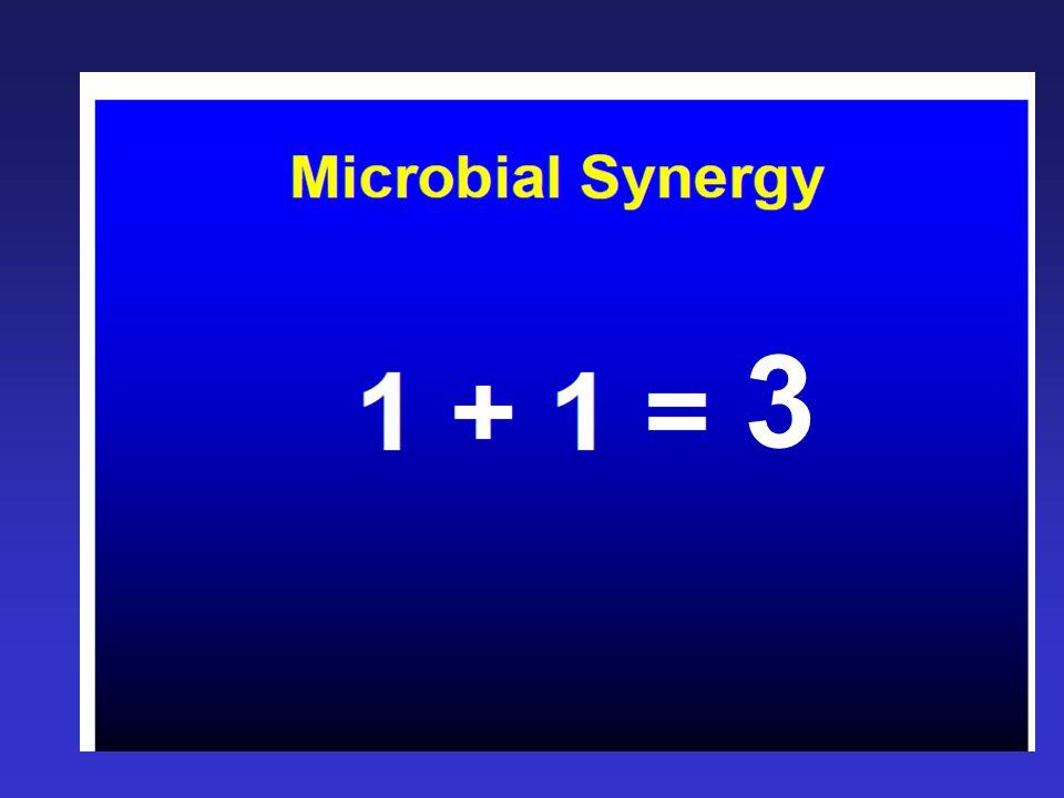 Intra-abdominal Infection Bakteriolojisi H.Yabancı cisimler: –Makroskopik: Cerrahi drenler Sütürler Laparatomi gaz ve kopresleri Hemostatik pedler ve