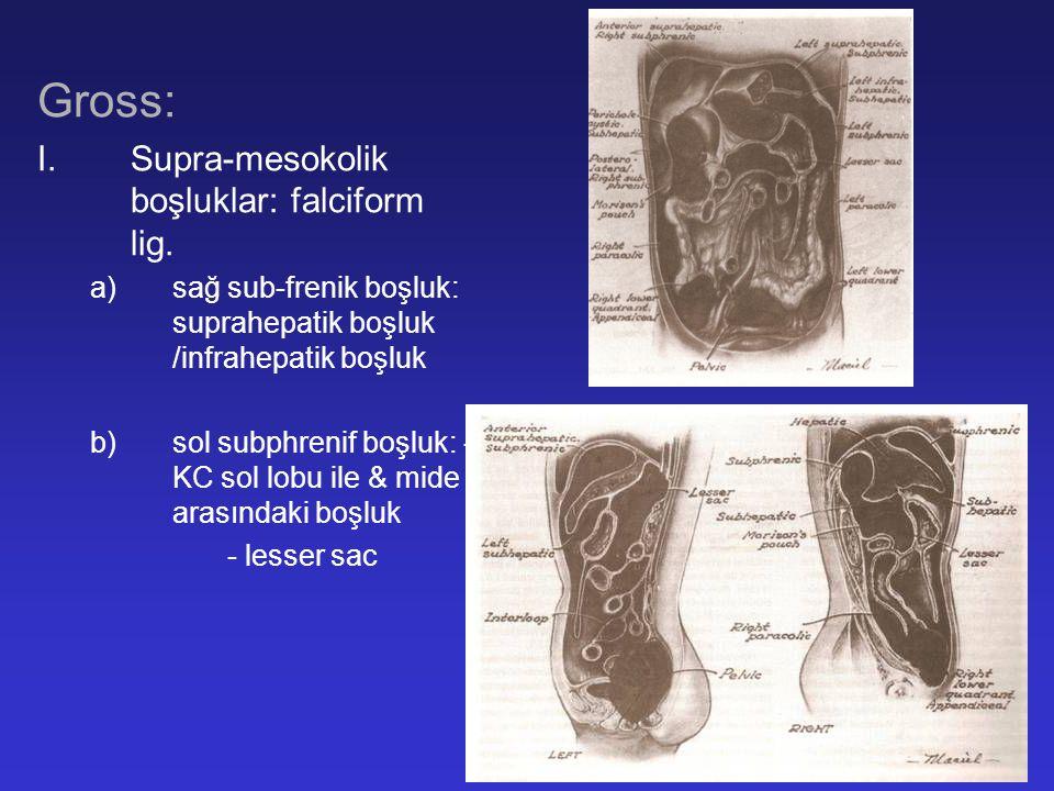 Intra-abdominal enfeksiyonun tedavisi C.Intra-abdominal apselerin cerrahi tedavisi: 1.Perkutan drenajda başarızılık 2.Güvenli perkutan dreanajın sağlanamaması 3.Pankreatik veya karsinomatozise bağlı oluşan bazı apselerde 4.Yüksek debili barsak fistülü ile birlikte olan apseler 5.Bursa omentalisin tutulması 6.Multiple isole inter-loop apseler 7.Klinik olarak şüphelenilen fakat BT/USG ile lokalize edilemeyen apseler