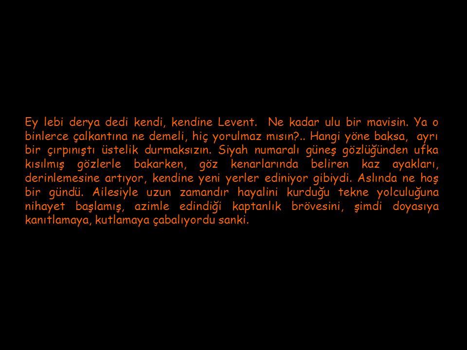 Müzik : Richard Clayderman Lütfen okudukça tıklayınız…