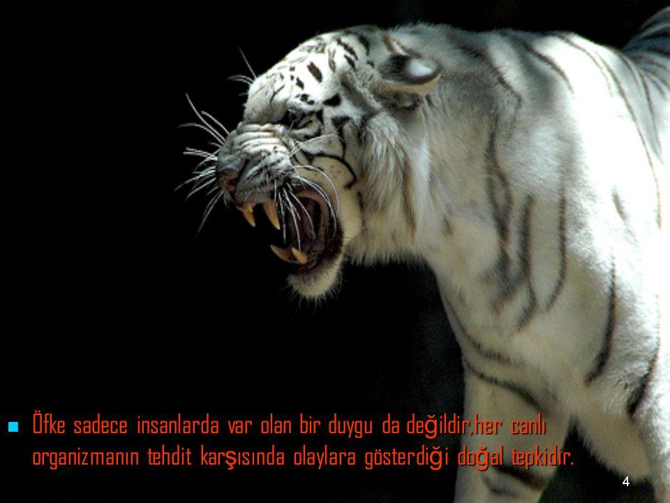4 Öfke sadece insanlarda var olan bir duygu da de ğ ildir,her canlı organizmanın tehdit kar ş ısında olaylara gösterdi ğ i do ğ al tepkidir. Öfke sade