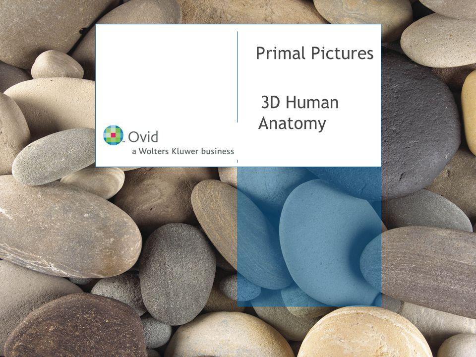 February 28, 2006 ▪ 12 Doktorların Yorumları… …Yüksek kalitede içerik sağlayan Primal Pictures, aynı zamanda da çok eğitici video görüntülerine erişim sağlıyor. Mr.