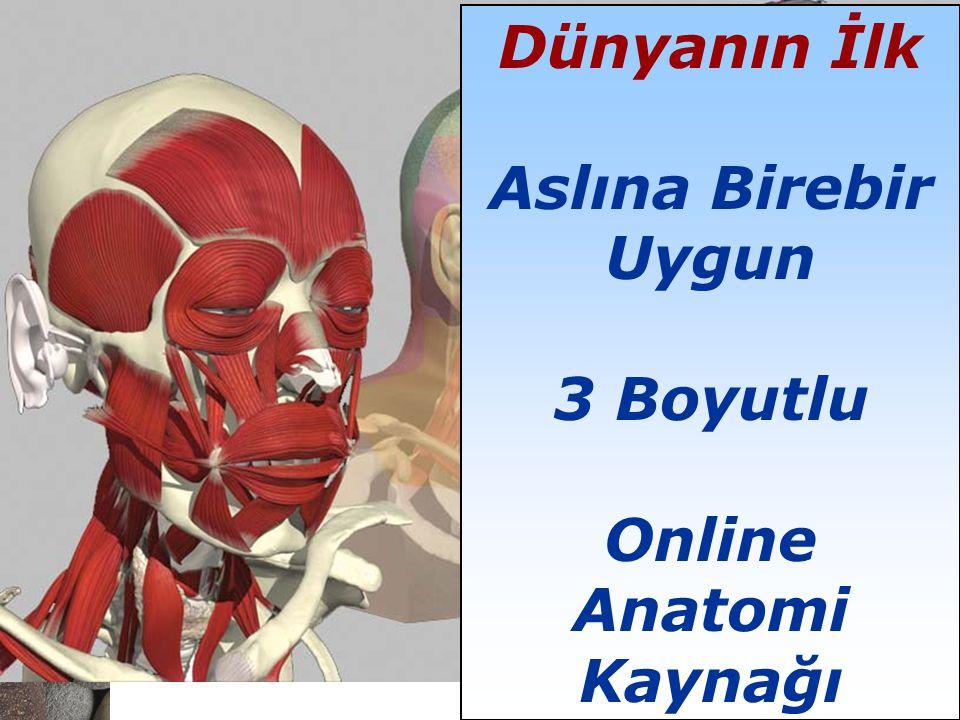February 28, 2006 ▪ 2 Dünyanın İlk Aslına Birebir Uygun 3 Boyutlu Online Anatomi Kaynağı