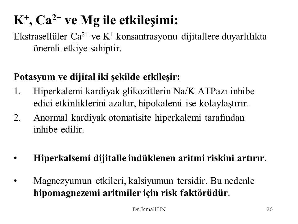 Dr. İsmail ÜN20 K +, Ca 2+ ve Mg ile etkileşimi: Ekstrasellüler Ca 2+ ve K + konsantrasyonu dijitallere duyarlılıkta önemli etkiye sahiptir. Potasyum