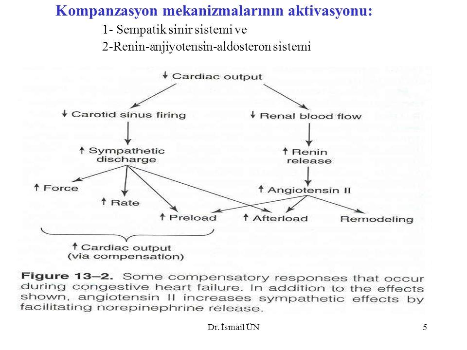 Dr. İsmail ÜN5 Kompanzasyon mekanizmalarının aktivasyonu: 1- Sempatik sinir sistemi ve 2-Renin-anjiyotensin-aldosteron sistemi