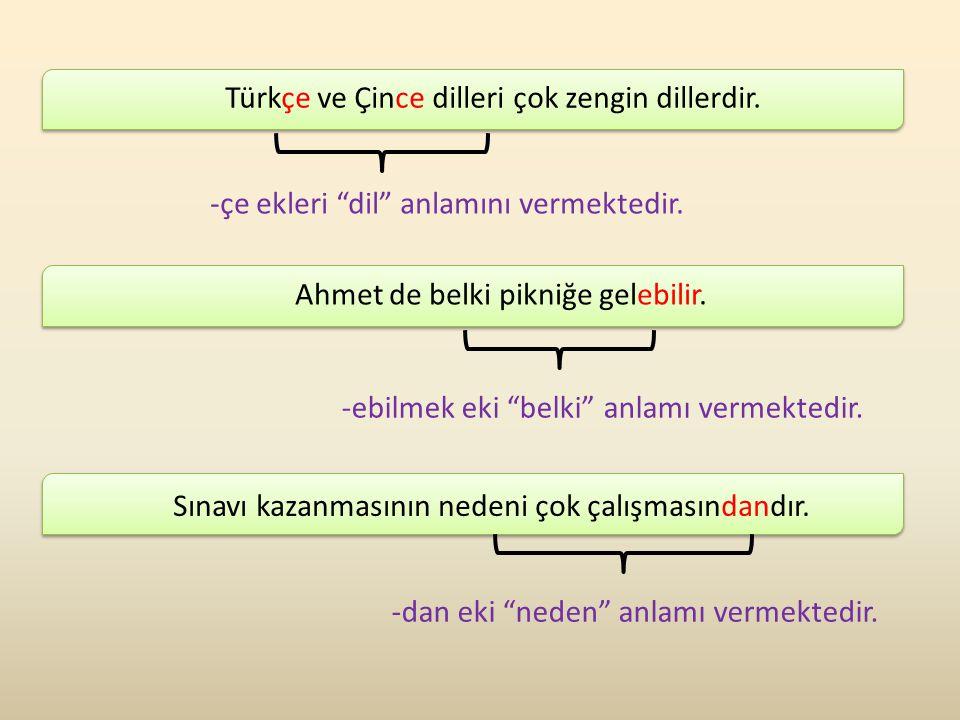 """Türkçe ve Çince dilleri çok zengin dillerdir. Ahmet de belki pikniğe gelebilir. Sınavı kazanmasının nedeni çok çalışmasındandır. -çe ekleri """"dil"""" anla"""