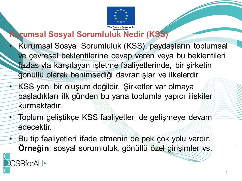 AB Komisyonu 2011 yılında KSS'yi şöyle tanımlamıştır: KSS, şirketlerin toplum üzerinde bırakacakları etkilere yönelik yerine getirmeleri gereken sorumluluklardır.