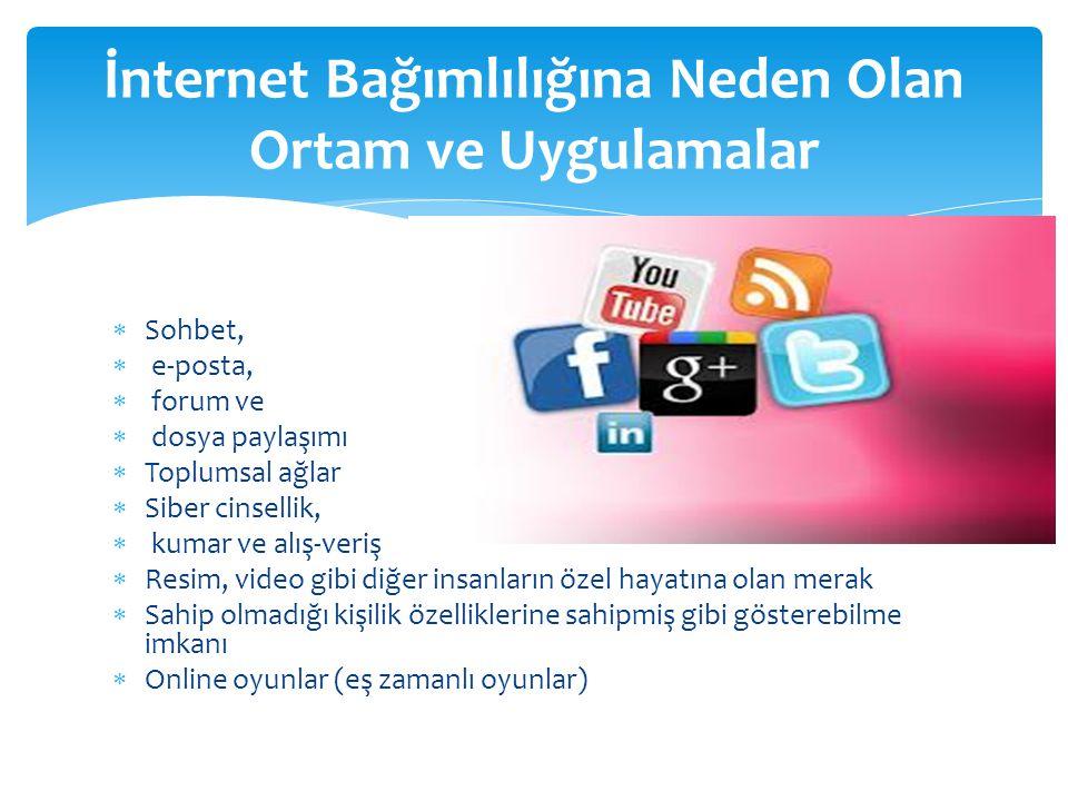  Sohbet,  e-posta,  forum ve  dosya paylaşımı  Toplumsal ağlar  Siber cinsellik,  kumar ve alış-veriş  Resim, video gibi diğer insanların özel