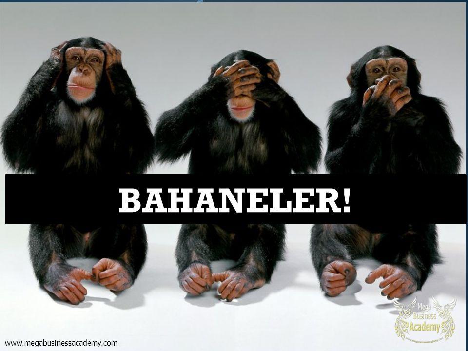 BAHANELER! www.megabusinessacademy.com