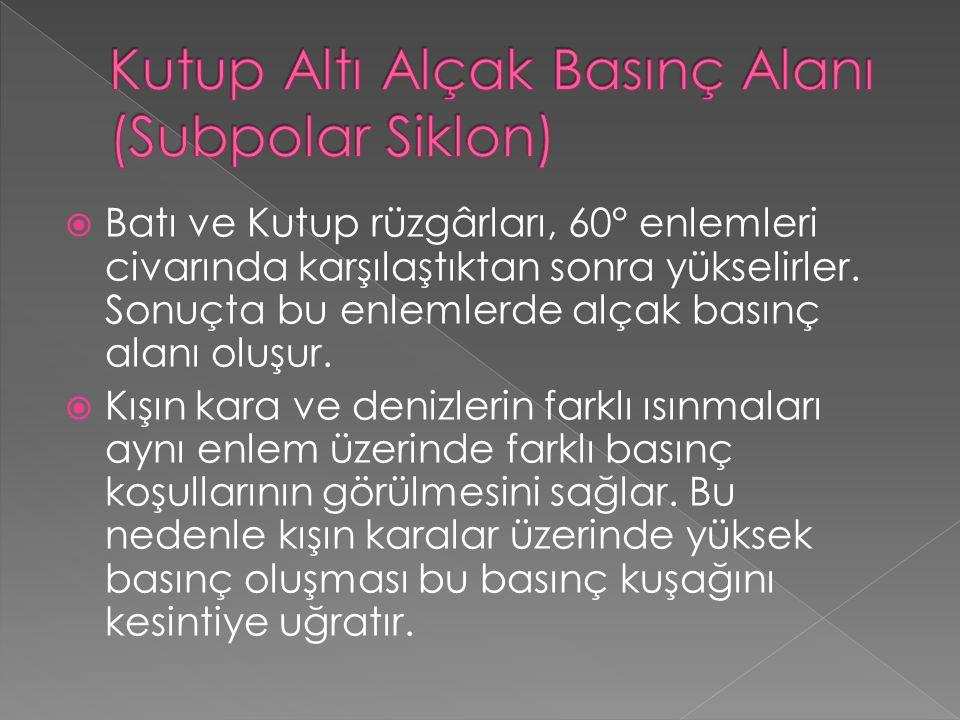  Türkiye farklı özellikteki basınçların etkisinde kalır.