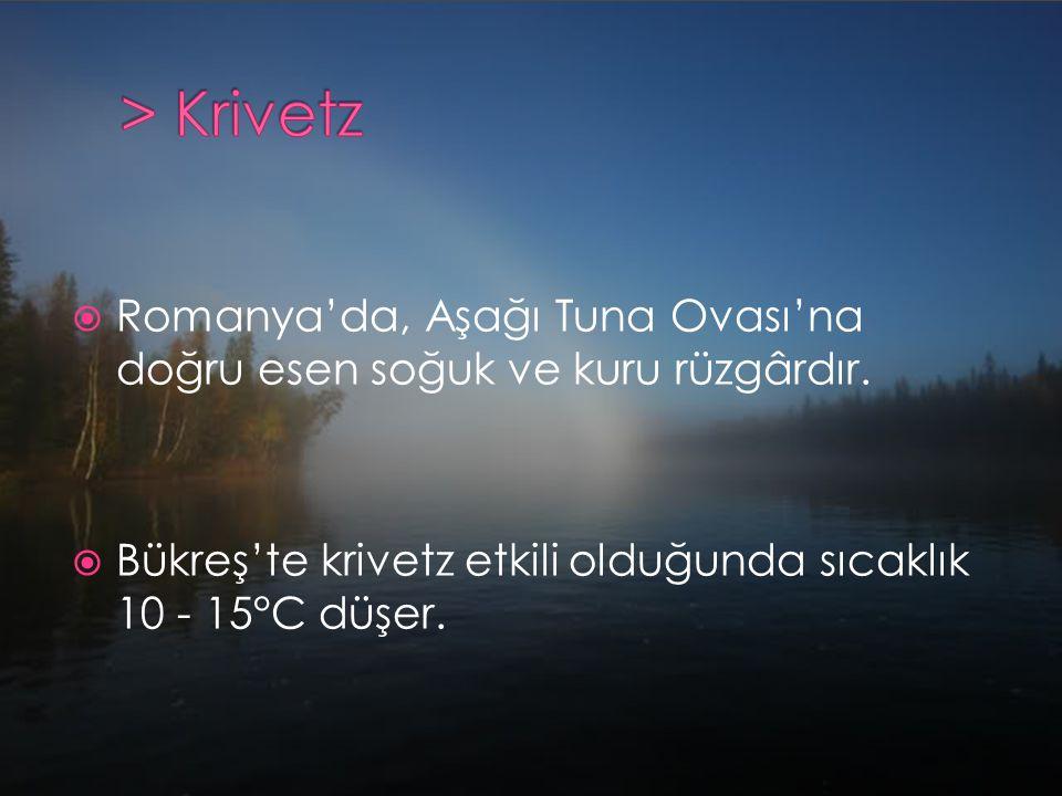  Romanya'da, Aşağı Tuna Ovası'na doğru esen soğuk ve kuru rüzgârdır.  Bükreş'te krivetz etkili olduğunda sıcaklık 10 - 15°C düşer.