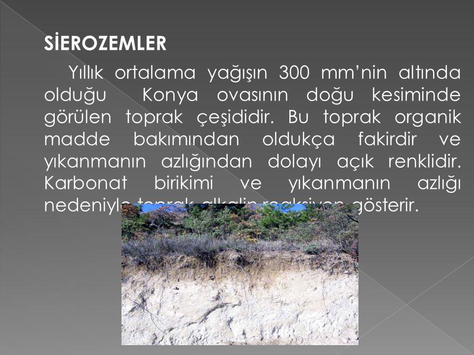 KAHVERENGİ STEP TOPRAKLARI Yıllık ortalama yağışın 400 mm altında ve yıllık ortalama sıcaklığın 8 – 12 °C arasında değiştiği İç Anadolu Bölgesi'nde, Doğu Anadolu ovalarında step ve uzun boylu step örtüsü altında gelişme gösteren topraklardır.