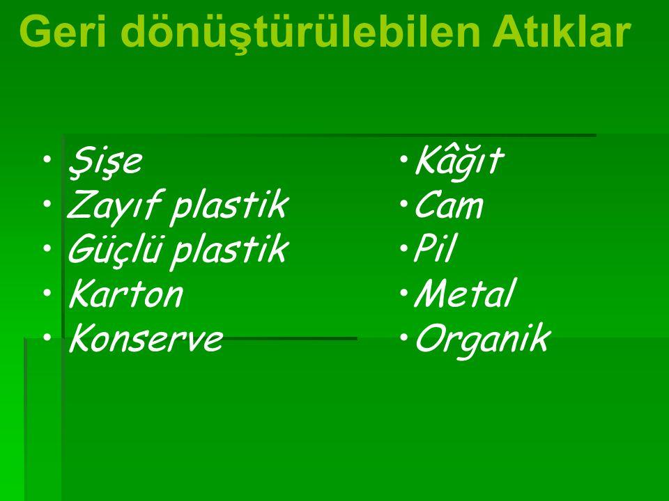 Şişe Zayıf plastik Güçlü plastik Karton Konserve Geri dönüştürülebilen Atıklar Kâğıt Cam Pil Metal Organik