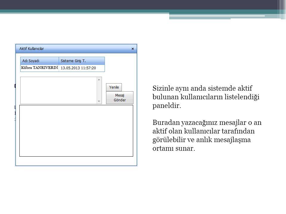 Sizinle aynı anda sistemde aktif bulunan kullanıcıların listelendiği paneldir.