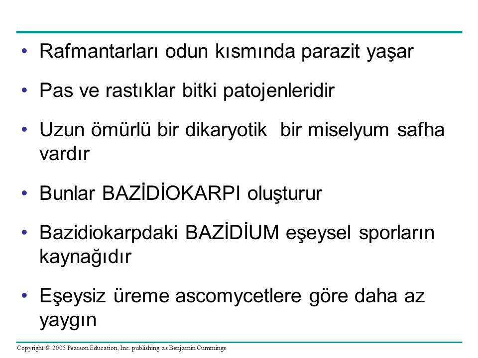 Copyright © 2005 Pearson Education, Inc. publishing as Benjamin Cummings Rafmantarları odun kısmında parazit yaşar Pas ve rastıklar bitki patojenlerid