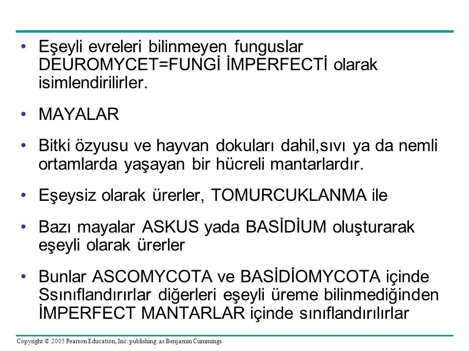 Copyright © 2005 Pearson Education, Inc. publishing as Benjamin Cummings Eşeyli evreleri bilinmeyen funguslar DEUROMYCET=FUNGİ İMPERFECTİ olarak isiml