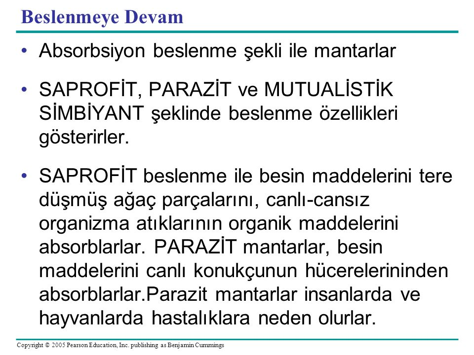 Copyright © 2005 Pearson Education, Inc. publishing as Benjamin Cummings Beslenmeye Devam Absorbsiyon beslenme şekli ile mantarlar SAPROFİT, PARAZİT v