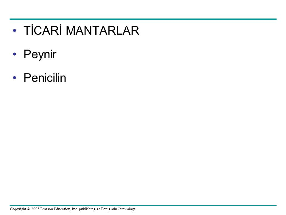 Copyright © 2005 Pearson Education, Inc. publishing as Benjamin Cummings TİCARİ MANTARLAR Peynir Penicilin