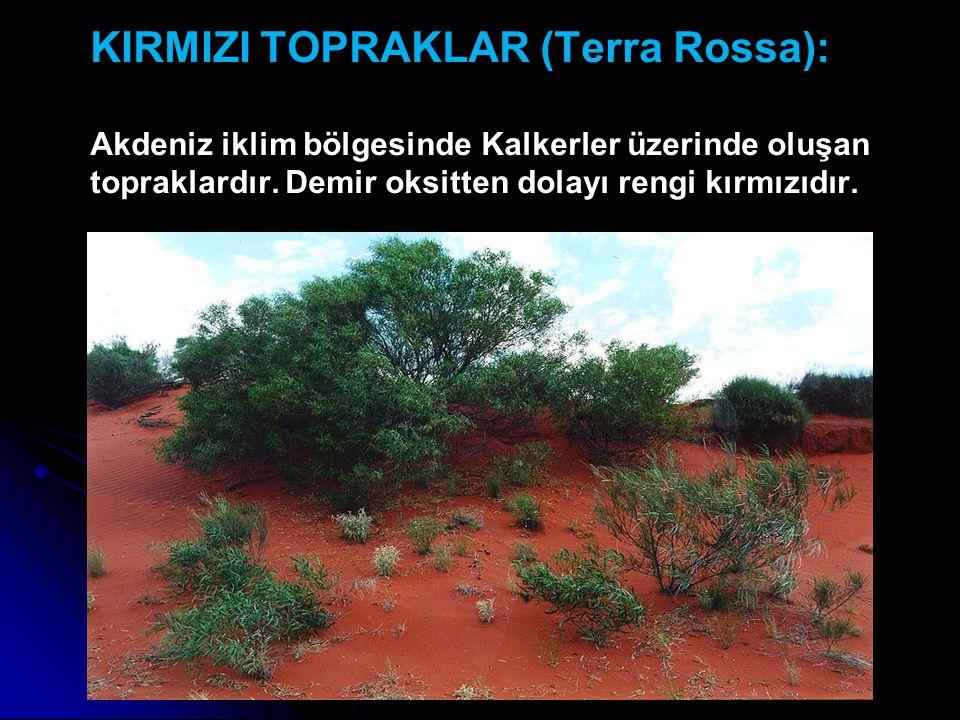 KIRMIZI TOPRAKLAR (Terra Rossa): Akdeniz iklim bölgesinde Kalkerler üzerinde oluşan topraklardır. Demir oksitten dolayı rengi kırmızıdır.