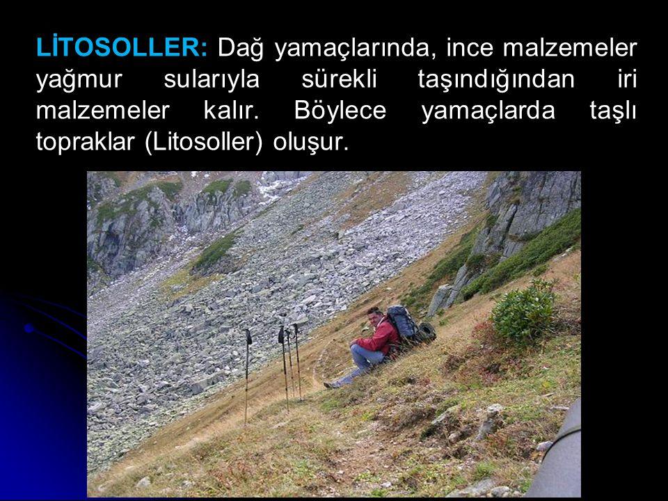 LİTOSOLLER: Dağ yamaçlarında, ince malzemeler yağmur sularıyla sürekli taşındığından iri malzemeler kalır. Böylece yamaçlarda taşlı topraklar (Litosol
