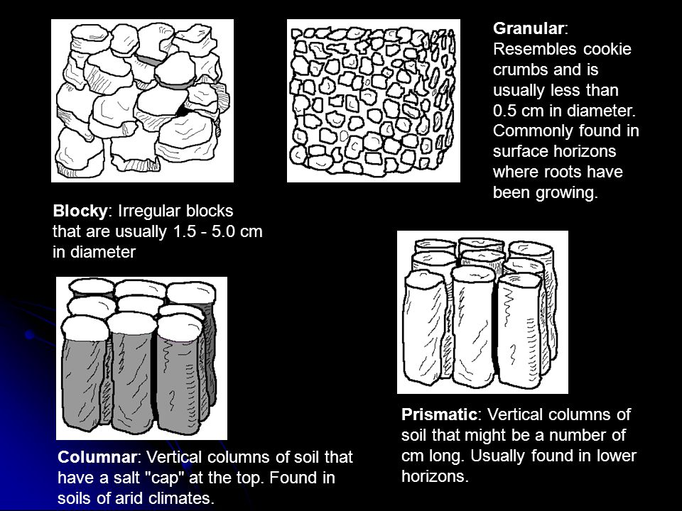 Granular: Resembles cookie crumbs and is usually less than 0.5 cm in diameter. Commonly found in surface horizons where roots have been growing. Block