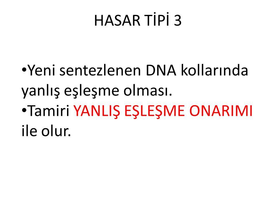 HASAR TİPİ 3 Yeni sentezlenen DNA kollarında yanlış eşleşme olması. Tamiri YANLIŞ EŞLEŞME ONARIMI ile olur.