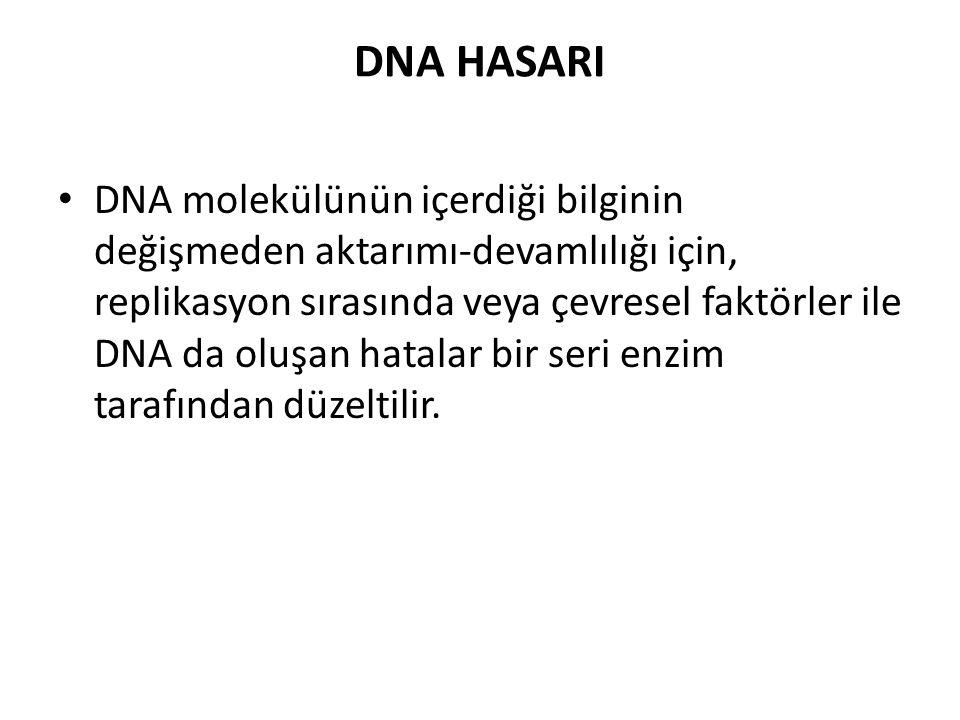 DNA da oluşan hasarlar iki şekilde olabilir Replikasyon sırasında Çevresel etkilerle **Fiziksel (UV ışınları veya radyasyon) **Kimyasal ajanlar Her iki etkiylede ortaya çıkabilecek hatalar DNA nın bazyapısında bir değişim veya yapısında ortaya çıkan bir değişim şeklinde olabilir.