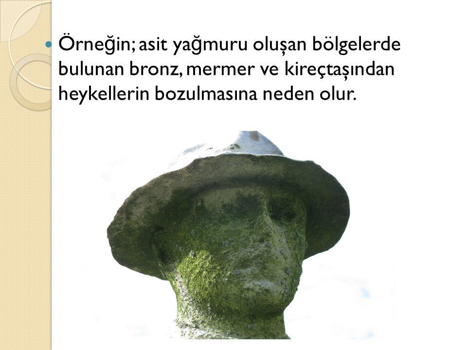 Örne ğ in; asit ya ğ muru oluşan bölgelerde bulunan bronz, mermer ve kireçtaşından heykellerin bozulmasına neden olur.