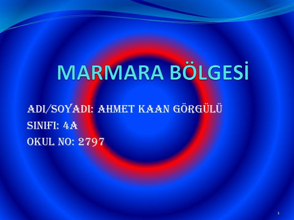 AdI/SoyadI: Ahmet Kaan GÖRGÜLÜ SINIFI: 4A Okul No: 2797 1