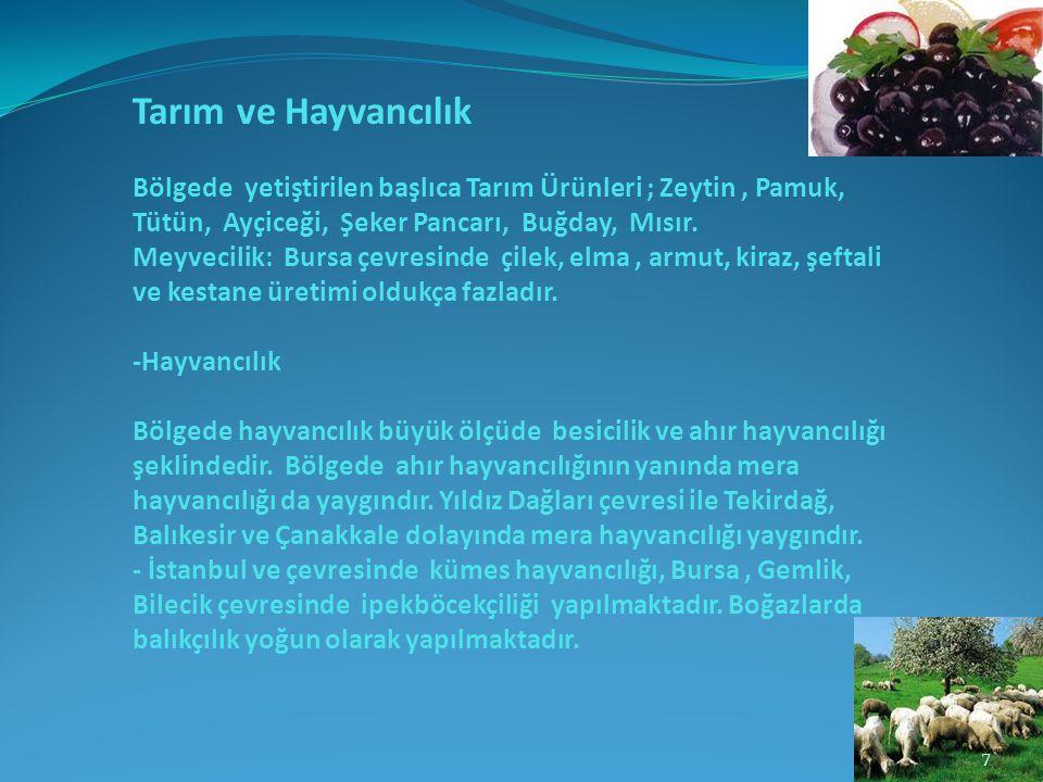 Tarım ve Hayvancılık Bölgede yetiştirilen başlıca Tarım Ürünleri ; Zeytin, Pamuk, Tütün, Ayçiceği, Şeker Pancarı, Buğday, Mısır. Meyvecilik: Bursa çev