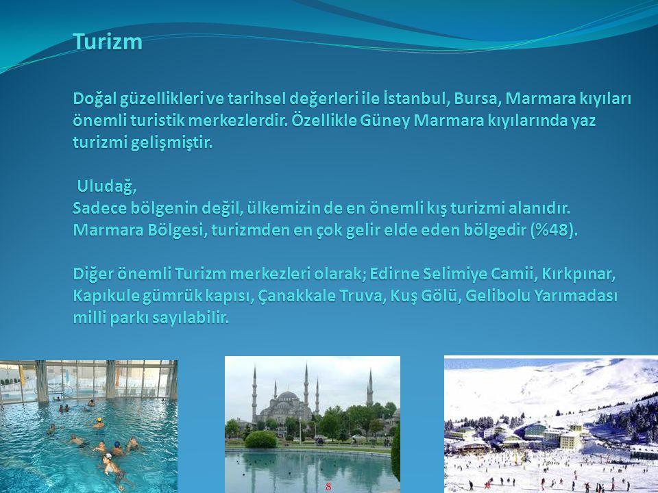 Turizm Doğal güzellikleri ve tarihsel değerleri ile İstanbul, Bursa, Marmara kıyıları önemli turistik merkezlerdir. Özellikle Güney Marmara kıyılarınd