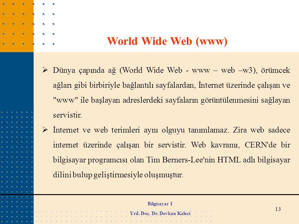 13 World Wide Web (www)  Dünya çapında ağ (World Wide Web - www – web –w3), örümcek ağları gibi birbiriyle bağlantılı sayfalardan, İnternet üzerinde
