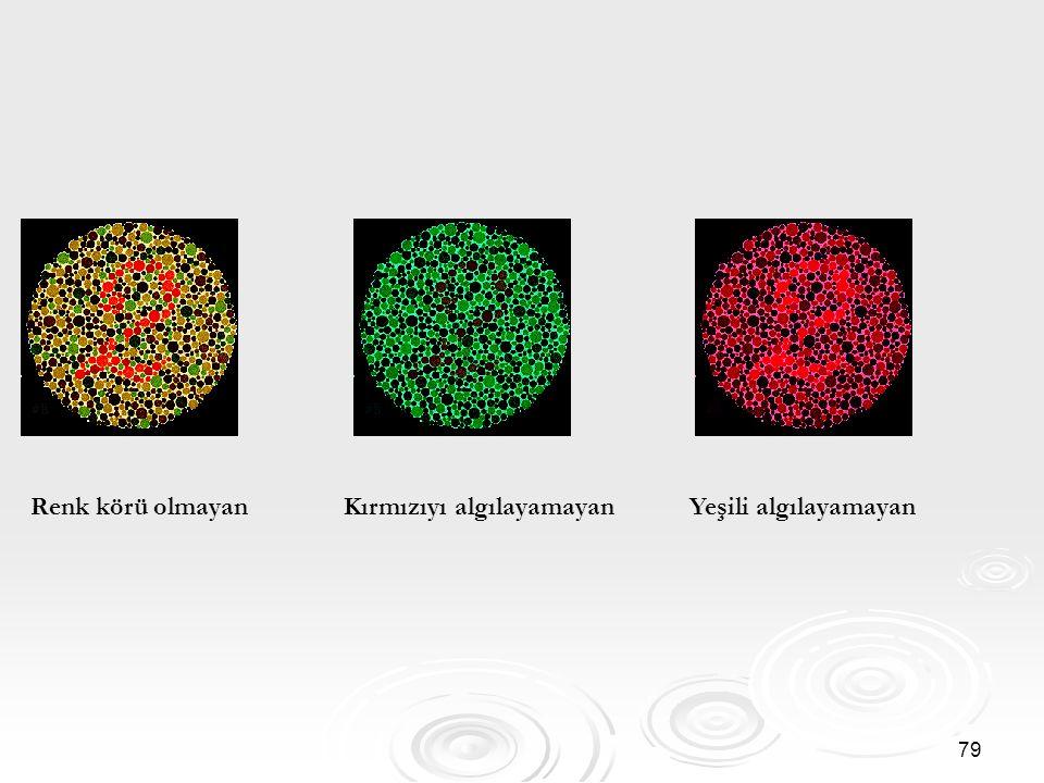 79 Renk körü olmayan Kırmızıyı algılayamayan Yeşili algılayamayan