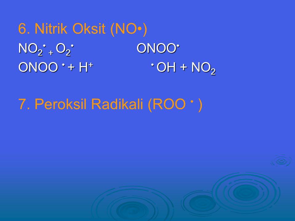 6.Nitrik Oksit (NO) NO 2 + O 2 ONOO NO 2 + O 2 ONOO ONOO + H + OH + NO 2 7.