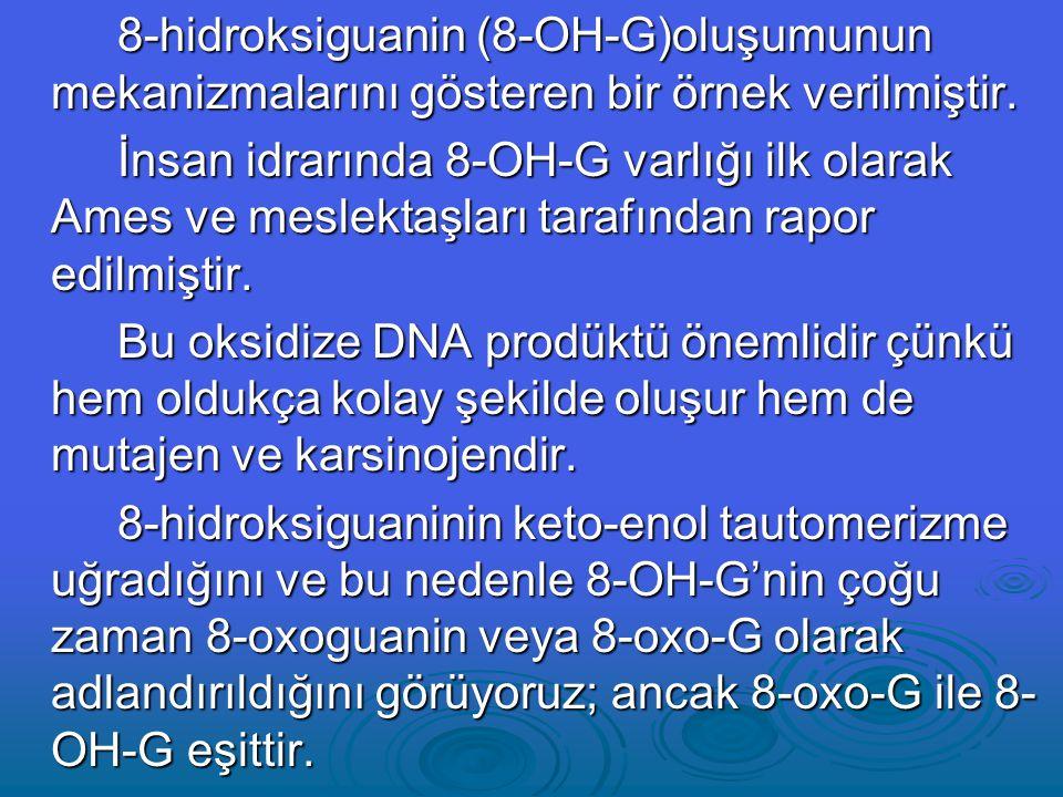 8-hidroksiguanin (8-OH-G)oluşumunun mekanizmalarını gösteren bir örnek verilmiştir.