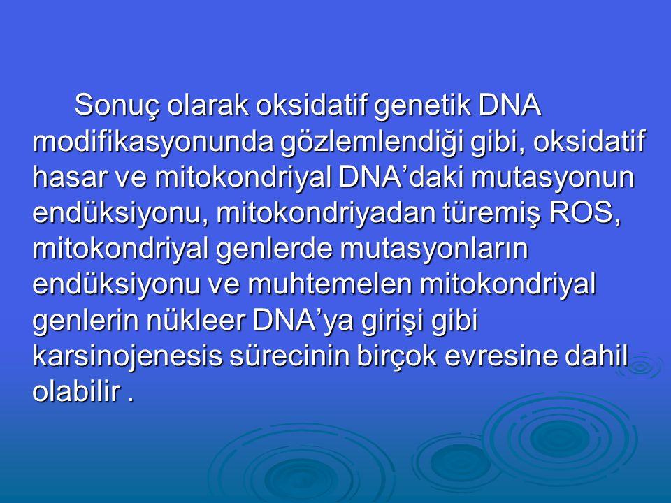 Sonuç olarak oksidatif genetik DNA modifikasyonunda gözlemlendiği gibi, oksidatif hasar ve mitokondriyal DNA'daki mutasyonun endüksiyonu, mitokondriyadan türemiş ROS, mitokondriyal genlerde mutasyonların endüksiyonu ve muhtemelen mitokondriyal genlerin nükleer DNA'ya girişi gibi karsinojenesis sürecinin birçok evresine dahil olabilir.