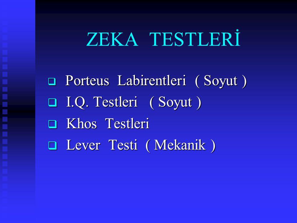 ZEKA TESTLERİ  Porteus Labirentleri ( Soyut )  I.Q. Testleri ( Soyut )  Khos Testleri  Lever Testi ( Mekanik )