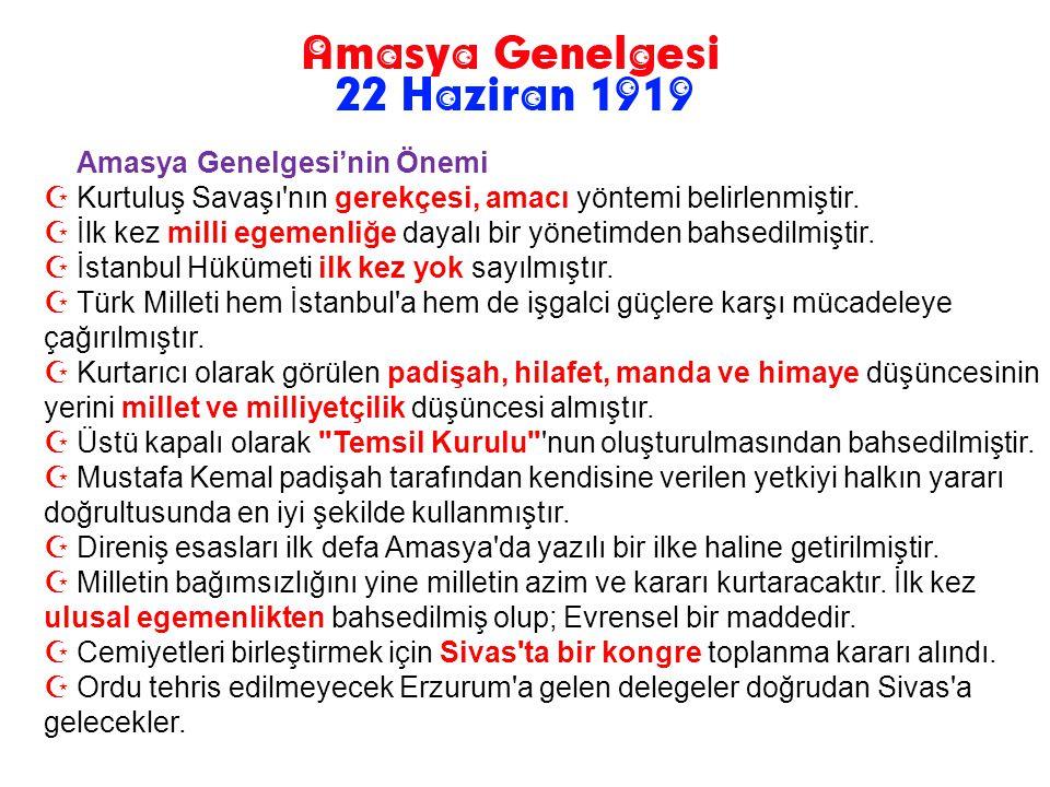Maddeleri:  Vatanın bütünlüğü, milletin bağımsızlığı tehlikededir. (Gerekçe)  İstanbul Hükümeti, üzerine düşen görev ve sorumluluğunu yerine getirem