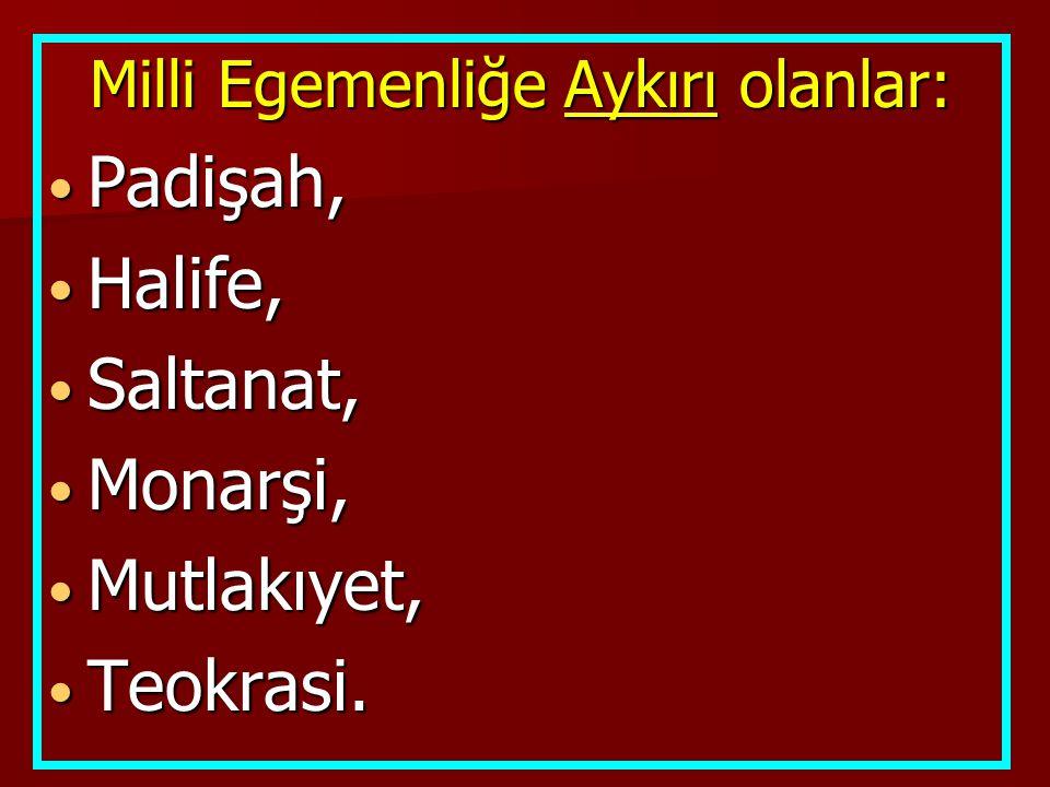  Yeni Türk Devleti'nin ilk anayasası olan Teşkilat-ı Esasi'yi hazırlamıştır.