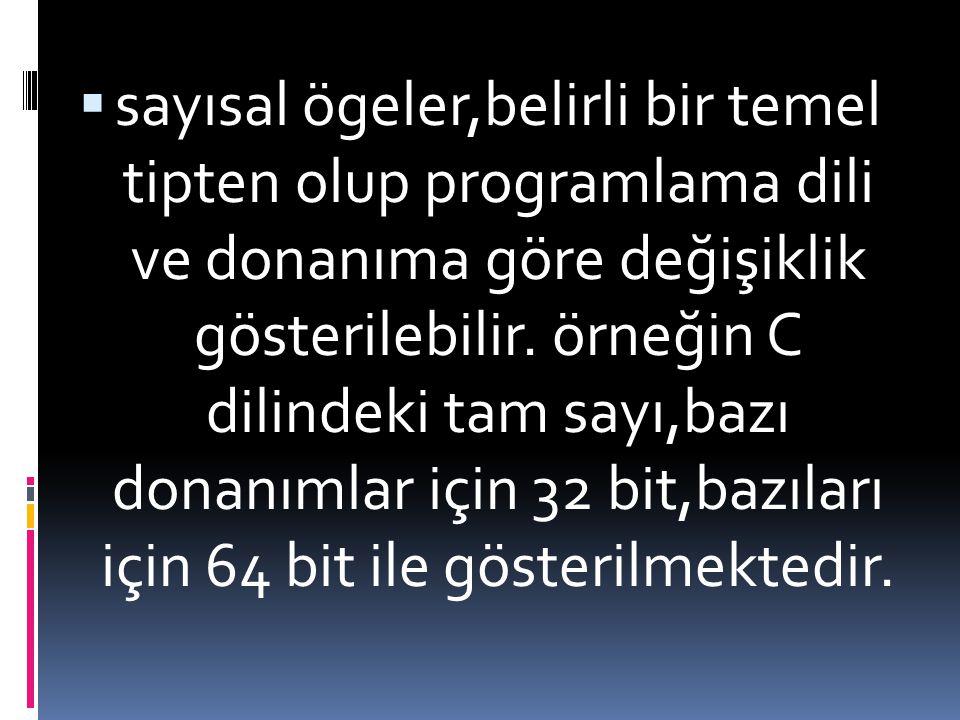  sayısal ögeler,belirli bir temel tipten olup programlama dili ve donanıma göre değişiklik gösterilebilir. örneğin C dilindeki tam sayı,bazı donanıml
