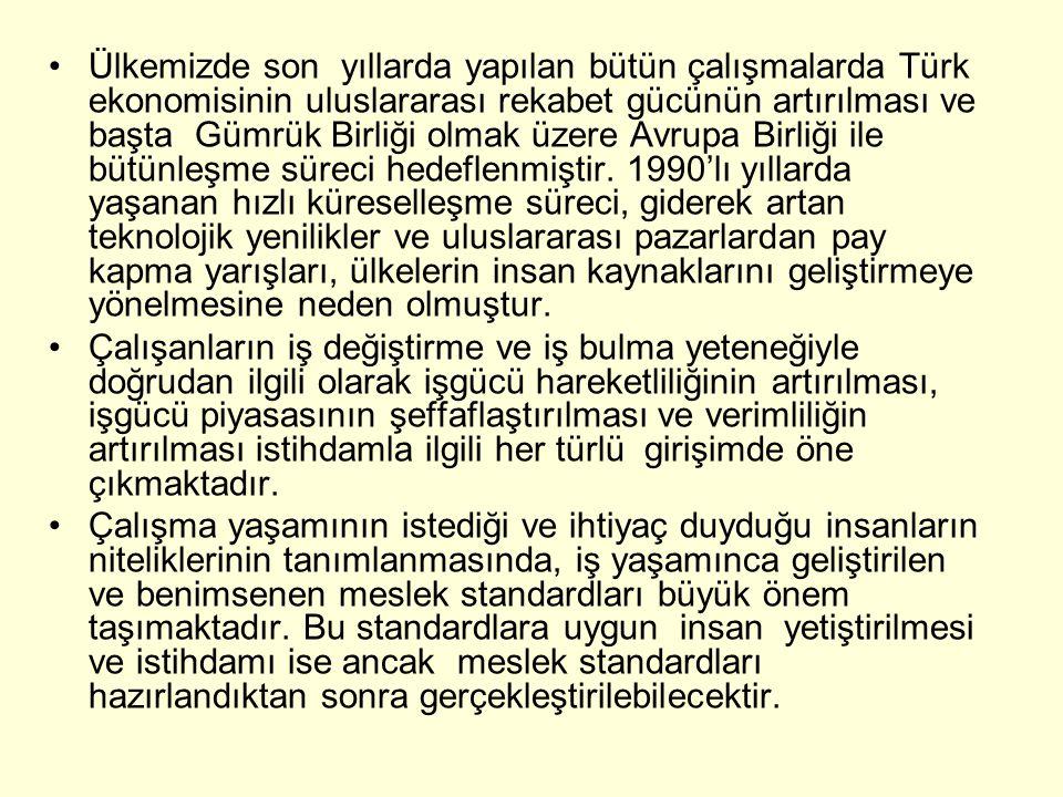 Ülkemizde son yıllarda yapılan bütün çalışmalarda Türk ekonomisinin uluslararası rekabet gücünün artırılması ve başta Gümrük Birliği olmak üzere Avrupa Birliği ile bütünleşme süreci hedeflenmiştir.
