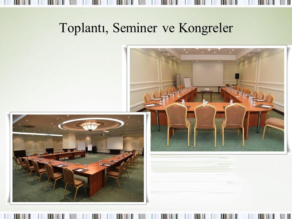 Toplantı, Seminer ve Kongreler