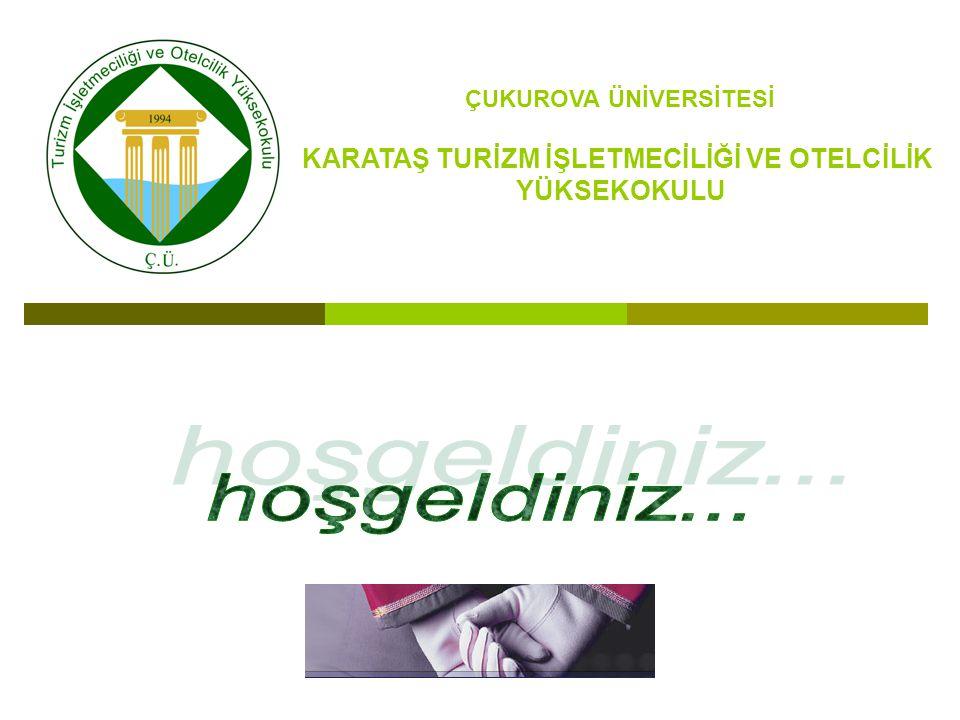 2012 Yılında Öğrenci Değişim Programları İle Giden Öğrenci Sayısı Birimin AdıGittiği ÜlkeGiden Öğrenci Sayısı Karataş Turizm İşletmeciliği ve Otelcilik Yüksekokulu Polonya6