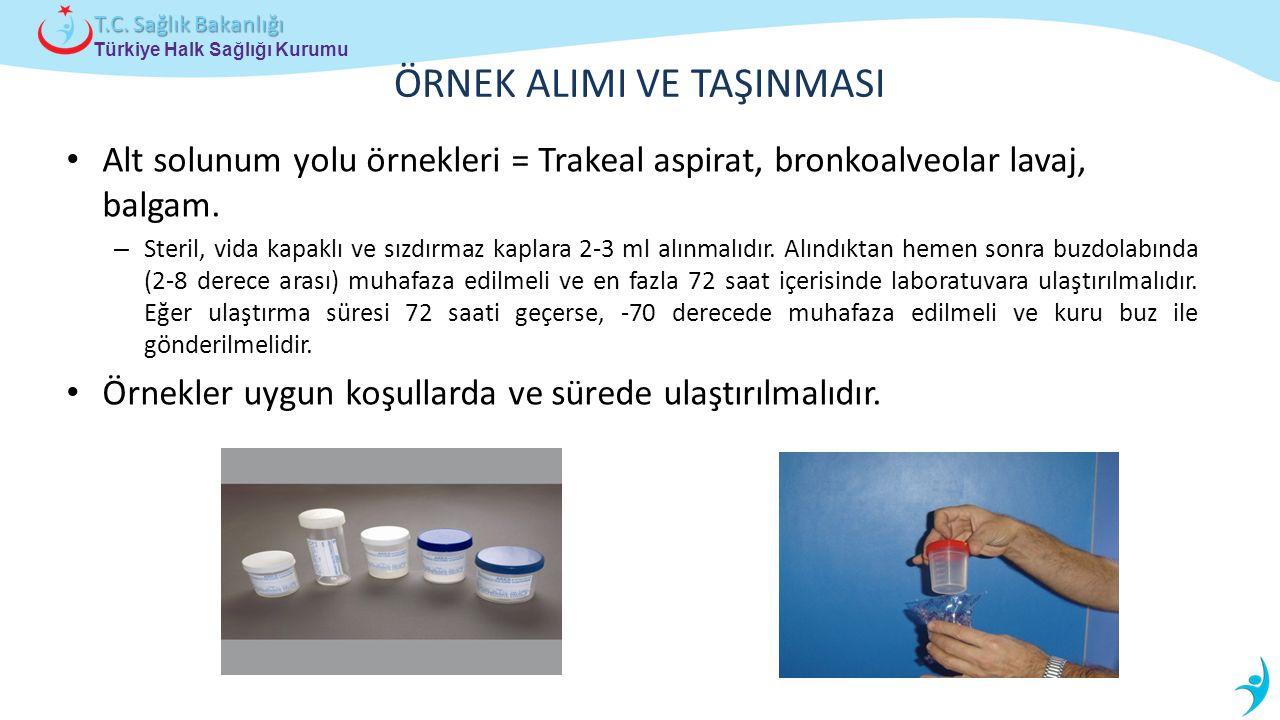 Türkiye Halk Sağlığı Kurumu T.C. Sağlık Bakanlığı ÖRNEK ALIMI VE TAŞINMASI Alt solunum yolu örnekleri = Trakeal aspirat, bronkoalveolar lavaj, balgam.