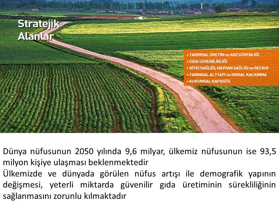 Türk Gıda Kodeksi Gıda ve yem işletmelerinin kayıt ve onay işlemleri Gıda işletmelerinin minimum teknik ve hijyenik şartlar ile özel hijyen şartları Takviye edici gıdalar Gıda ve yemin resmi kontrolleri Gıda ile temas eden madde ve malzeme Yem katkı maddeleri GIDA VE YEM GÜVENİLİRLİĞİ