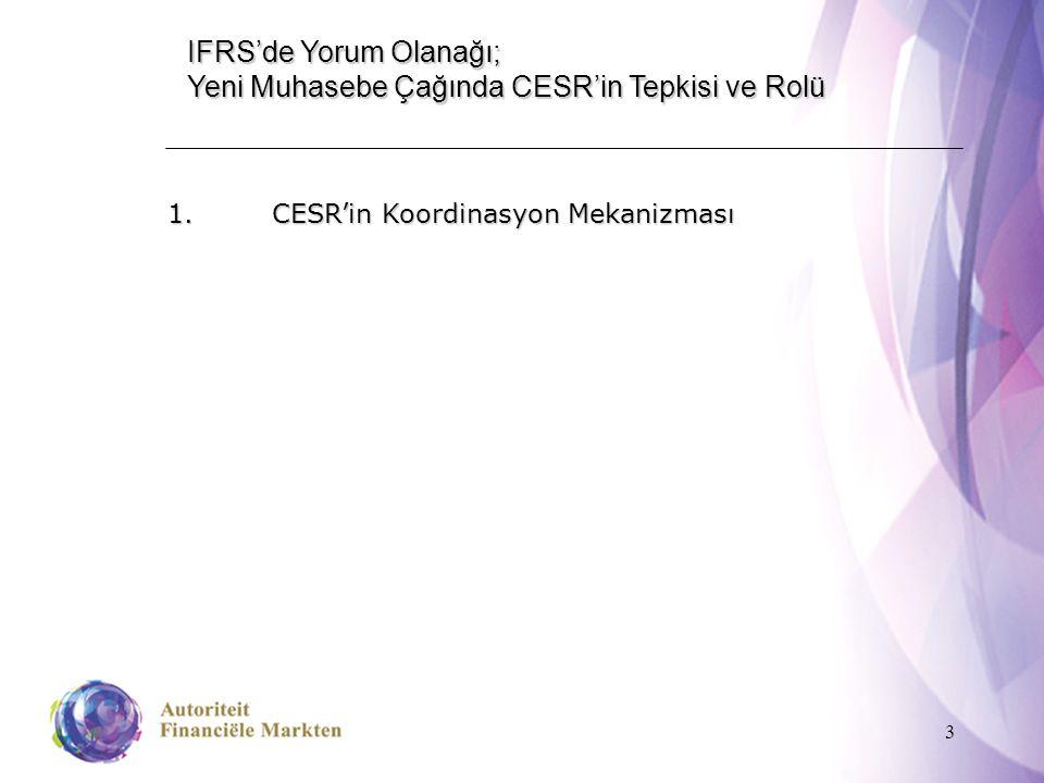3 IFRS'de Yorum Olanağı; Yeni Muhasebe Çağında CESR'in Tepkisi ve Rolü 1.CESR'in Koordinasyon Mekanizması