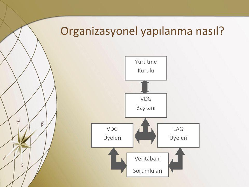 Organizasyonel yapılanma nasıl?