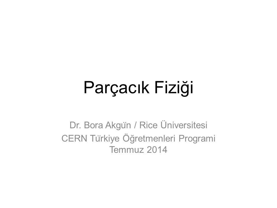 Parçacık Fiziği Dr. Bora Akgu ̈ n / Rice Üniversitesi CERN Tu ̈ rkiye Öğretmenleri Programi Temmuz 2014