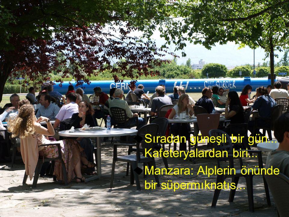 Sıradan güneşli bir gün... Kafeteryalardan biri... Manzara: Alplerin önünde bir süpermıknatıs...